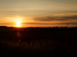 IMG_2005_up